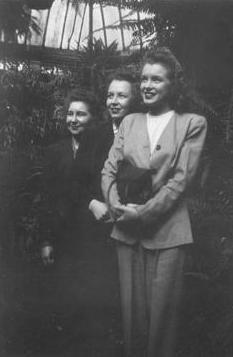 19442.jpg
